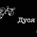 Siri російською для андроїд: привіт, я дуся