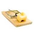 Чому миші люблять сир?