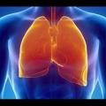 Забудь про кашлі! Як очистити легені після куріння всього за три дні