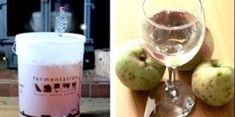 Як зробити домашнє вино з яблук: рецепт - інструкція з фото