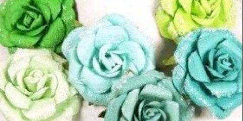 Які квіти м'ятного відтінку
