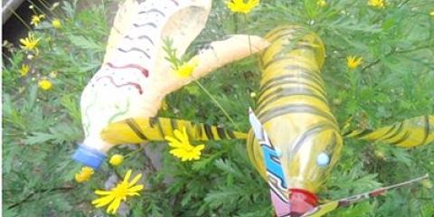 Бджола з пластикової пляшки своїми руками - фото, відео як зробити